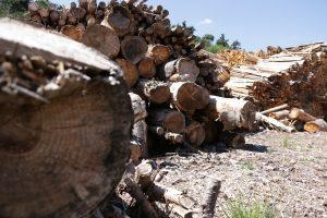 Stockage du bois sur nos plateformes